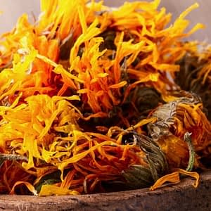 Calendula | The Apothecary Egypt