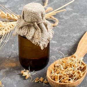 Wheat Germ Oil | The Apothecary Egypt