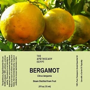 Bergamot Essential Oil Egypt