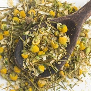 German Chamomile | The Apothecary Egypt