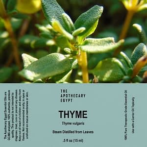 Thyme Essential Oil Egypt