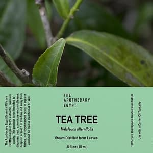 Tea Tree Essential Oil Egypt