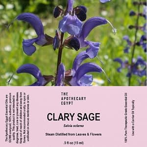 Clary Sage Essential Oil Egypt