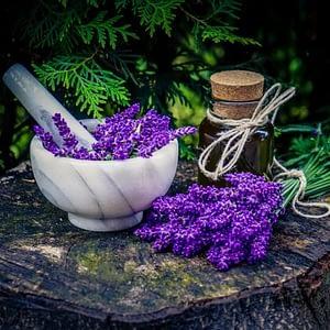 Lavender Oil | The Apothecary Egypt