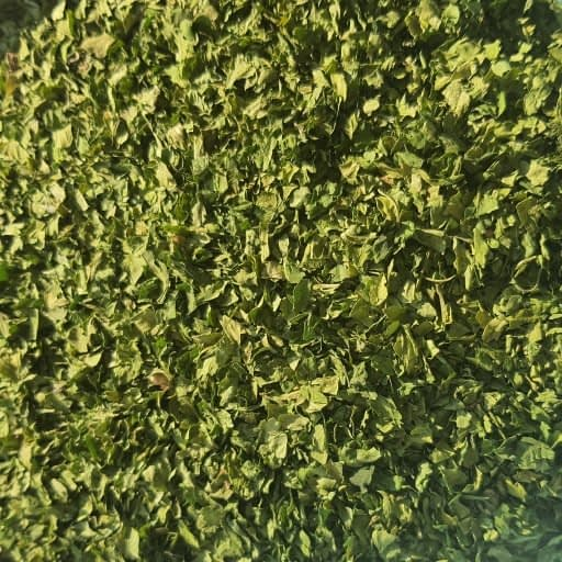 Organic Parsley Leaf